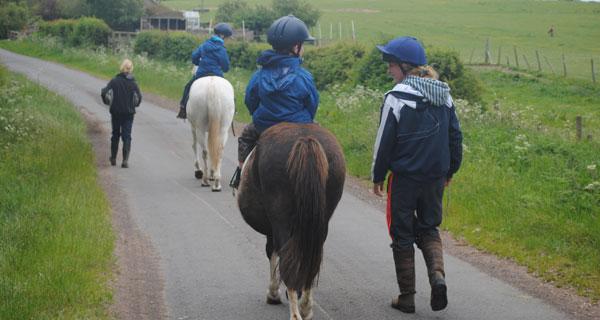 horsescene